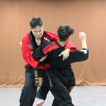 Hapkimooyeh Instructor Training (합기무예 지도자 수련)